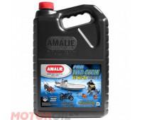 AMALIE  Pro 2-Cycle TC-W 3 RL